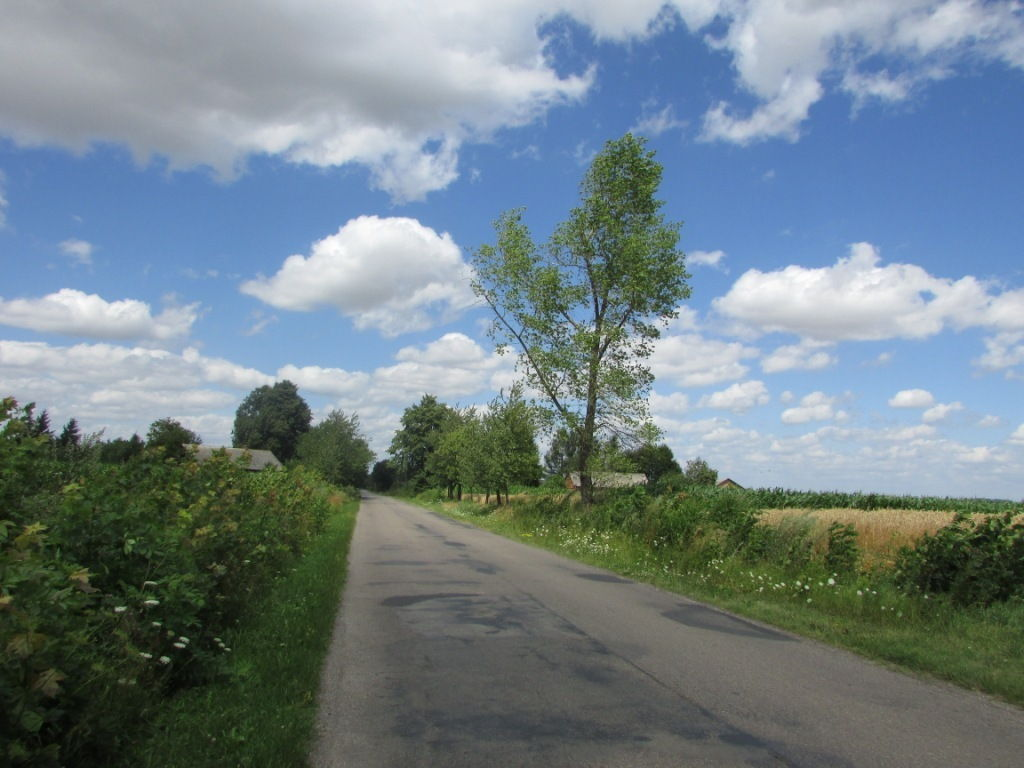 4 km asfaltu: Wola Gałęzowska – Zaraszów-Kolonia