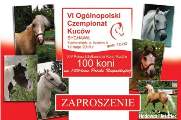 VI Ogólnopolski Czempionat Kuców oraz Pokaz Użytkowania Koni i Kuców ZAPROSZENIE
