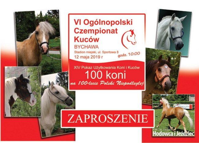 VI Ogólnopolski Czempionat Kuców oraz Pokaz Użytkowania Koni i Kuców